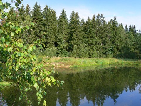 Продается земельный участок в Новой Москве - Фото 2
