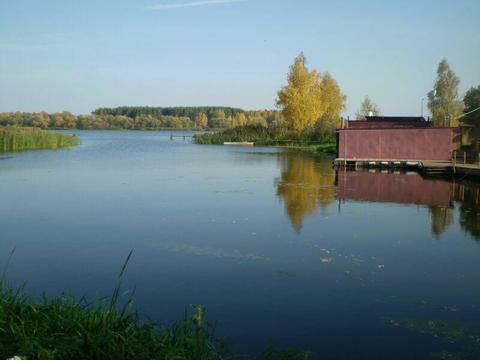 Мошковский залив в Конаково - рыбаки с рыбой, грибники с грибами - Фото 2