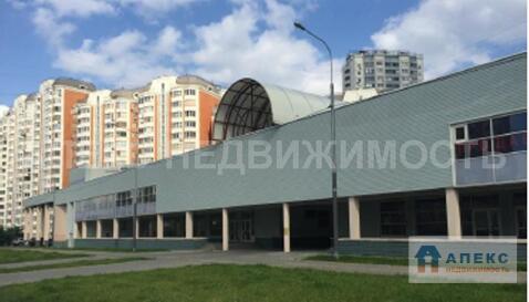 Продажа магазина пл. 12853 м2 м. Выхино в торговом центре в Вешняки - Фото 1