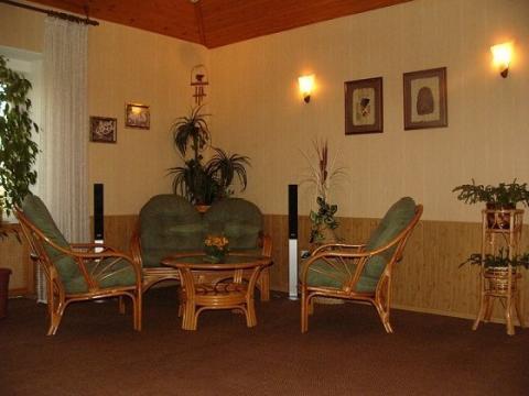 Красивый особняк с шикарным видом на Неву - Фото 2