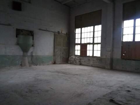 Производство в аренду от 134 кв. м, Севастополь - Фото 3