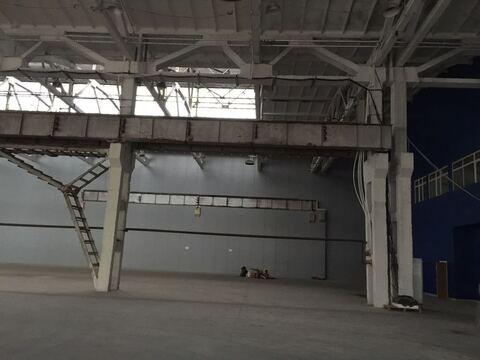 Продажа под производство 5000 кв. м, Белая Калитва - Фото 1