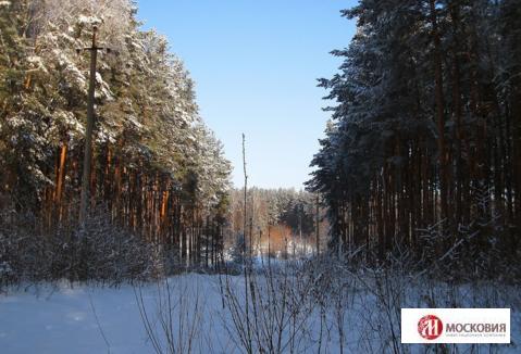 Земельный участок 12соток, ПМЖ, Новая Москва - Фото 1