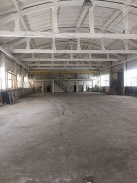 Сдается теплое производственно-складское помещение 1000м2, д.Кипень - Фото 1