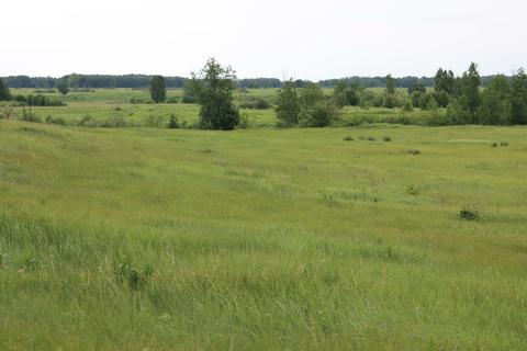 Продается земельный участок с\х в Пышминском р-не Свердловской области - Фото 5