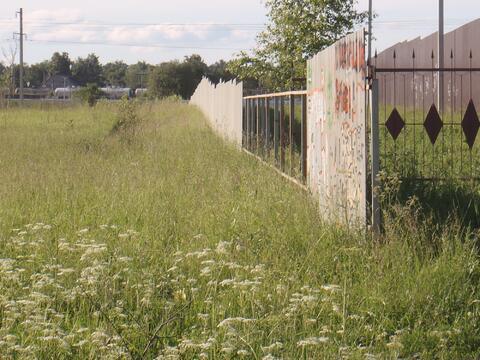 Продается участок 1 Га сельхоз. назначения рядом с г. Истра - Фото 3