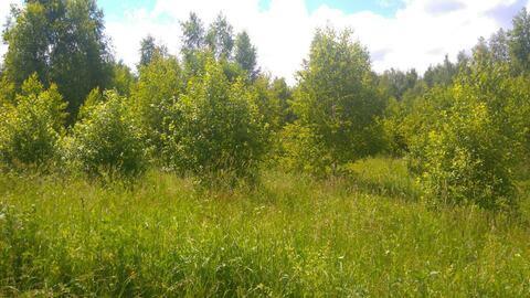 9,4 га, вблизи г. Наро-Фоминск (для фермер. хоз-ва), газ, эл-во 300 м - Фото 5
