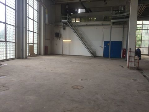 Склад-производство 976 м2 , 1 этаж, Невский район - Фото 1