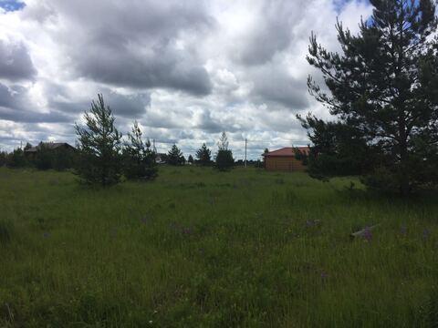 Земельный участок 16 соток в СНТ Сосновый бор около п. Хорлово - Фото 1