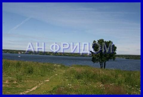 Участок 3га на берегу Пироговского водохранилища - Фото 5