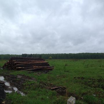 Земельный участок д. Большое Карасево - Фото 1