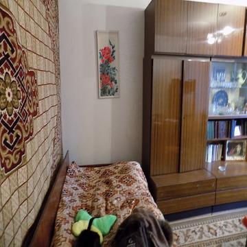 Продам комнату в квартире - Фото 2