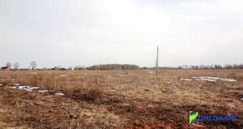 Земельный участок в д. Лобастово Некрасовского района - Фото 1
