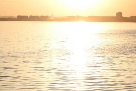 Участок 25 соток с береговой линией - Фото 5