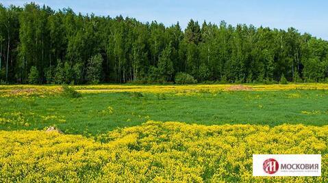 Участок 10,5 соток, Киевское шоссе, 25 км от МКАД - Фото 4