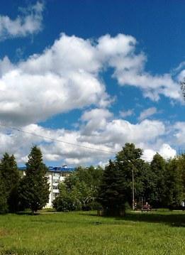Зем.участок 16 сот(ИЖС) с коммуник,7км от МКАД, д.Федюково Подольск.р-н - Фото 4