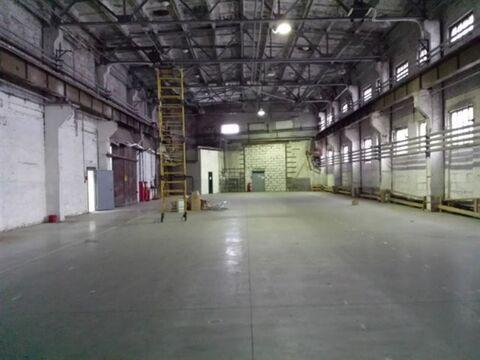 Сдам складское помещение 2470 кв.м, м. Электросила - Фото 4