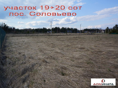 Продается участок 39 соток пос. Соловьево - Фото 4