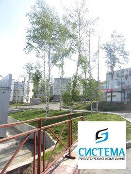 Квартира 36 кв.м Березовый (Академгородок) - Фото 1