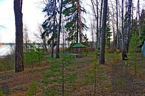 Участок 880 соток на первой линии Истринского водохранилища в лесу - Фото 2