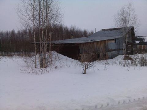 Продам земельный участок в д. Куземино - Фото 3