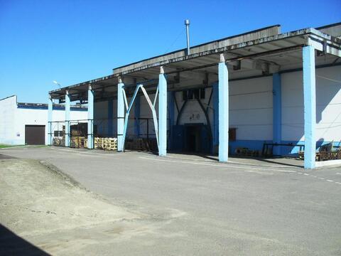 Склад 1000м2 в Борисове - Фото 5