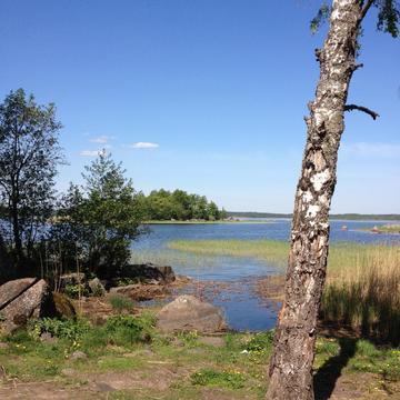 Участок вблизи рыбного озера Вишневское - Фото 1