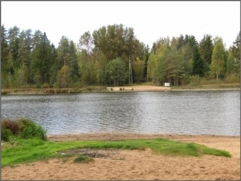 Раздолье - Бережок - озеро Былинное - Фото 3