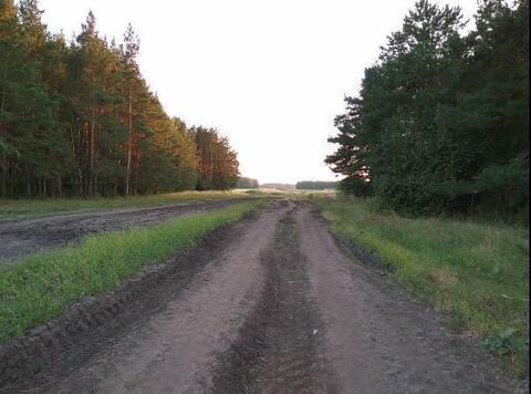 Продажа участка, Успенка, Тюменский район - Фото 2