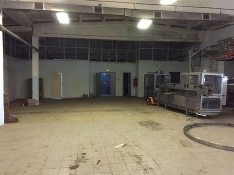 Сдам складское помещение 1680 кв.м, м. Международная - Фото 3