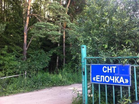 Участок в СНТ Елочка - Фото 1