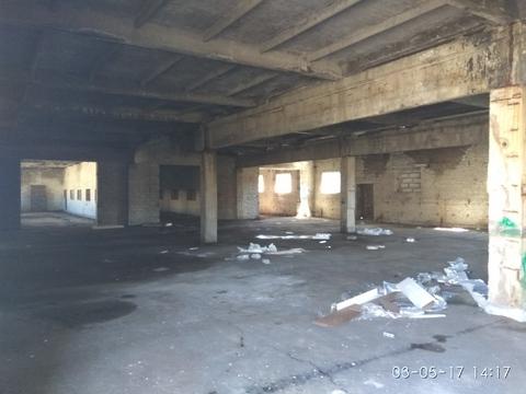 Дается производственно-складское помещение возле КАД, Лисий Нос - Фото 4