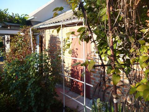 Дом 55 кв.м. на участке 4,3 сотки, сжм - Фото 4