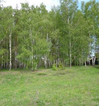 Эксклюзивный участок на реке Волга - Фото 4