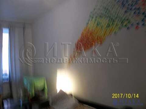 Продажа комнаты, м. Сенная площадь, Ул. Гороховая - Фото 4