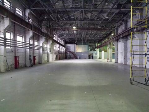 Сдам складское помещение 2470 кв.м, м. Электросила - Фото 5