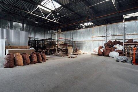 Продам производственное помещение 8500 кв.м, м. Проспект Просвещения - Фото 5