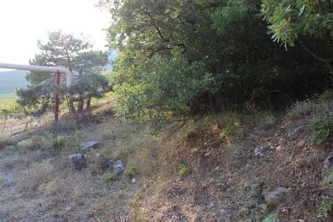 Продажа видового участка в Алупке - Фото 5