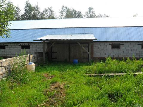 Продажа участка кфх 5,4 га в Тверской области д.Заболотье - Фото 4