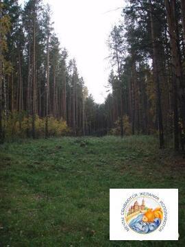 Земля 20 сот. ИЖС. Тюменское напр, 40 км. от центра Екатеринбурга - Фото 3