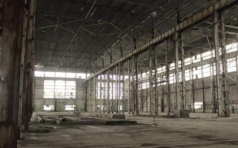 Сдам производственный корпус 24 000 кв.м. - Фото 1