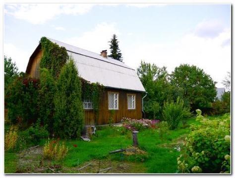 Зимняя дача в Ватутинках ! Сосновый бор и центральные коммуникации - Фото 1