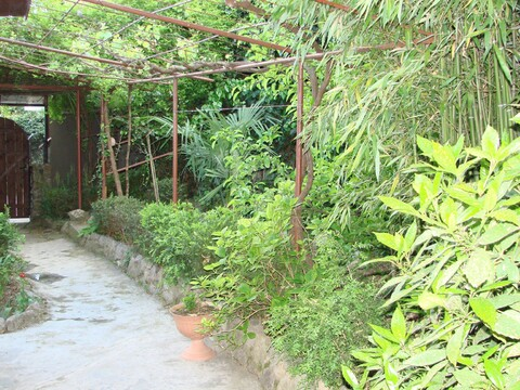 Домик в Ливадии для летнего отдыха - Фото 3
