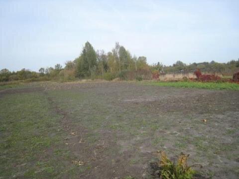 Участок в с.Нижний Ольшанец - Фото 2