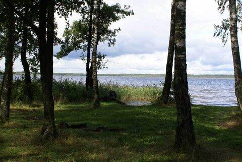 Сад- огород в Бойково , ж\д Горьковское - Фото 1