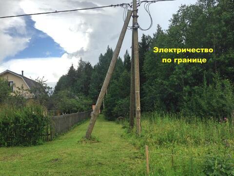 Волосовкий район , деревня Шелково 15 соток ИЖС - Фото 4