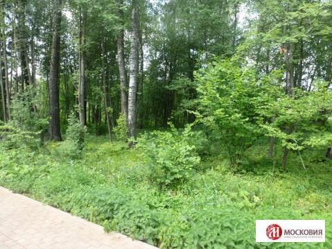 Лесной земельный участок 15 соток, все коммуникации, 30 км от МКАД - Фото 3