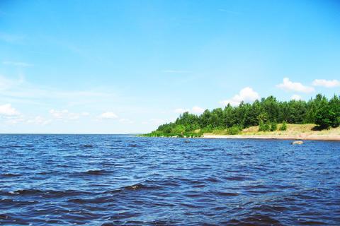 Пп участок 2,3 Га озеро лес - Фото 1