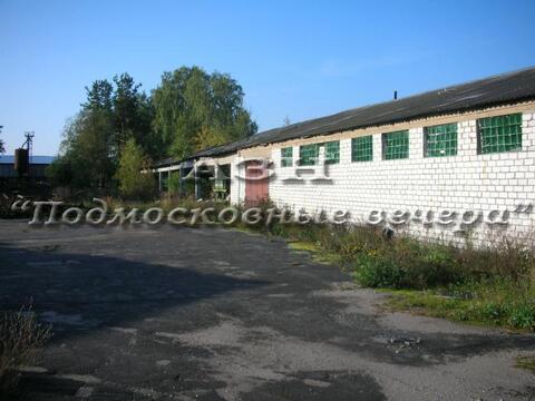 Горьковское ш. 110 км от МКАД, Вольгинский, Участок 107 сот. - Фото 2