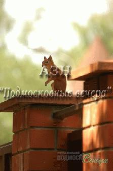 Калужское ш. 35 км от МКАД, Кленово, Коттедж 170 кв. м - Фото 5